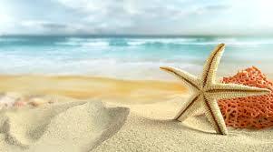 Želimo vam lepa poletna počitniška doživetja